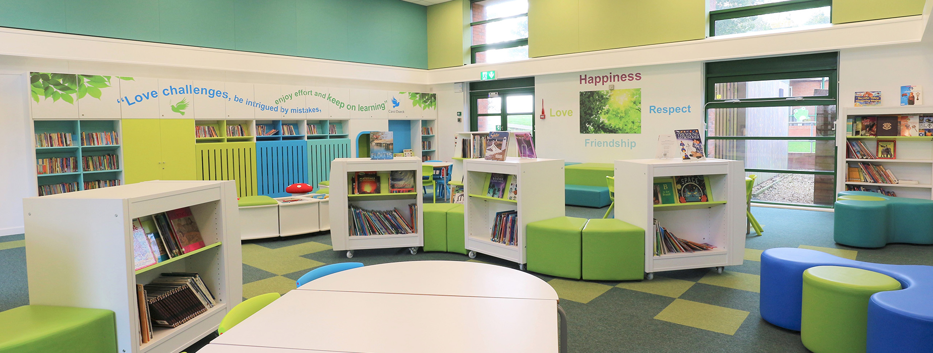 An image for Primary Schools libraries